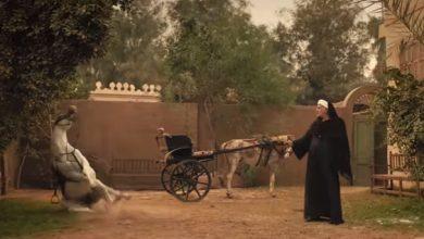 صورة مشهد قتل الحصان في برومو موسى يثير ازمه